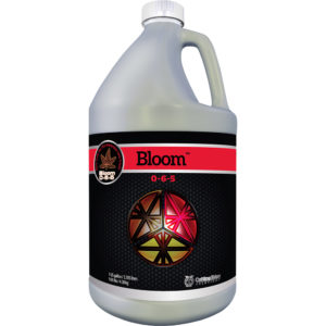 1-Gal-Bloom.jpg