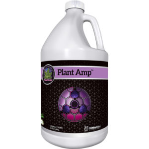 1-Gal-Plant-Amp.jpg