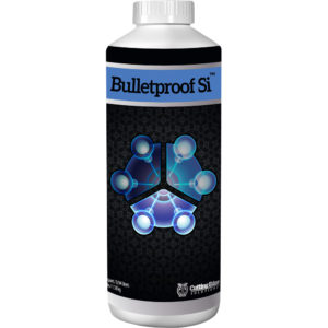 1-Qt-Bulletproof-Si.jpg