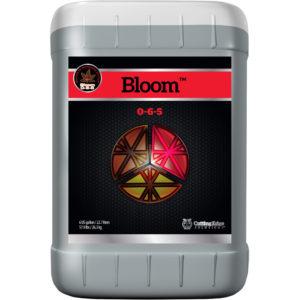 6-Gal-Bloom.jpg