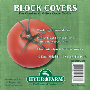 WCECOVER_1471.jpg